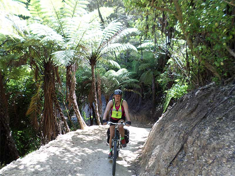 cycling in the bush