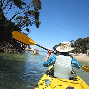 <strong>Nelson</strong> Enjoy Craft Beers, Boutique Wines or Kayak the Abel Tasman.